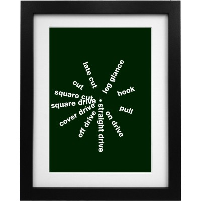Cricket Shots Art Print